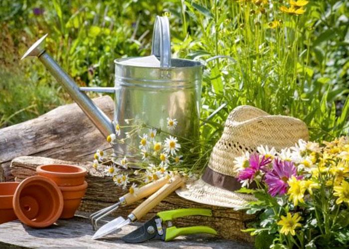Herramientas b sicas para las tareas de jardiner a Jardineria online